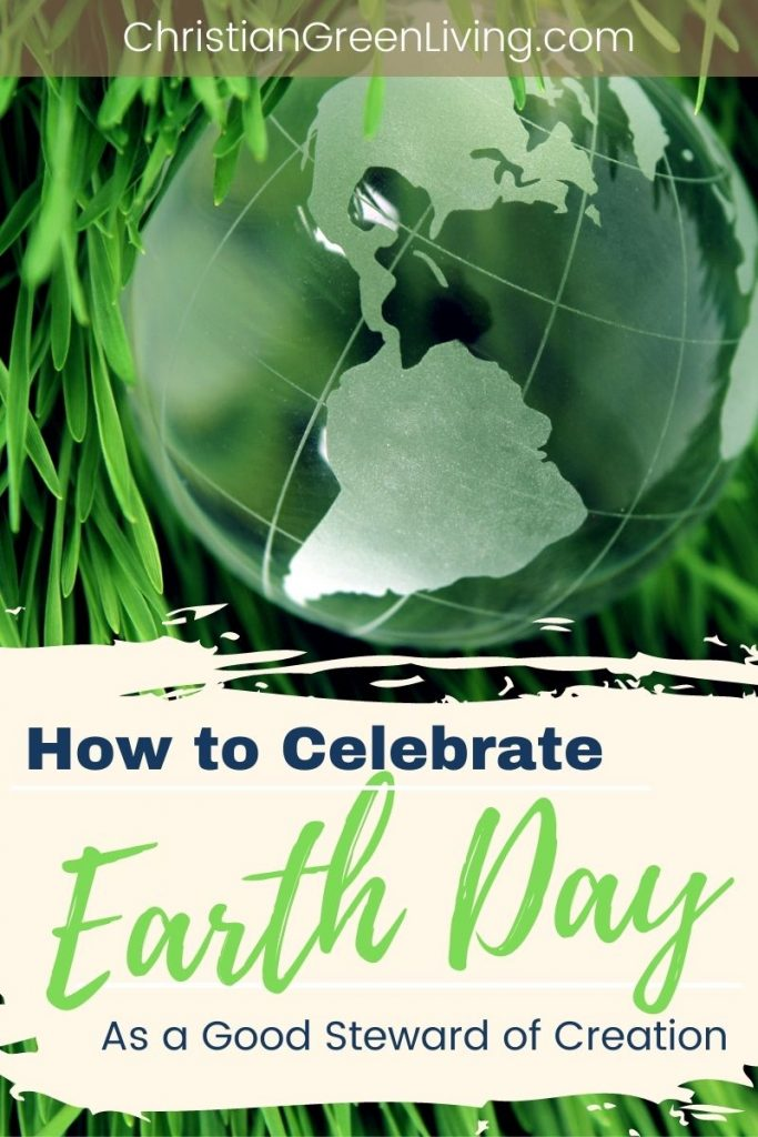 How to Celebrate Earth Day as A Good Steward of Creation
