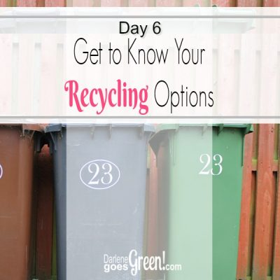 Go Green Understand You Recycling Options