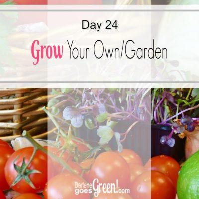 Go Green Start A Garden
