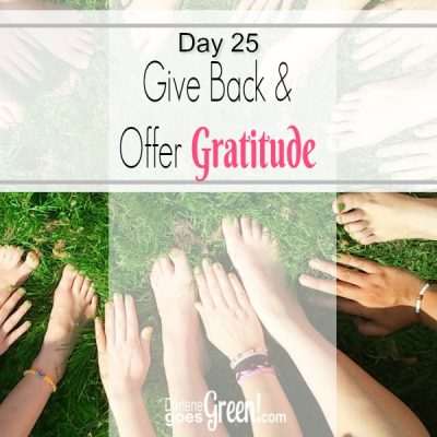 Go Green Give Back and Offer Gratitude