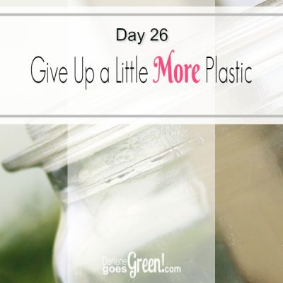 Go Green Give Up Ziplock Bags and Plastic Wrap